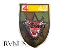 https://i0.wp.com/rvnhs.com/museum/bdq%20insignia/shield4thgroup42ndbattalion.JPG