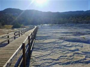 Picture of boardwalks at Mammoth Hot Springs in Yellowstone National Park