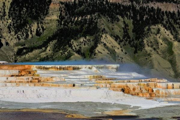 Picture of Canary Springs at Mammoth Hot Springs in Yellowstone National Park