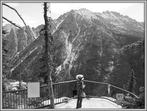 Weiwei Admiring the Mountains at Washington Pass