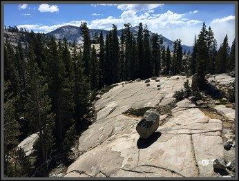 Glacial Erratics on Bedrock. Yosemite National Park, California