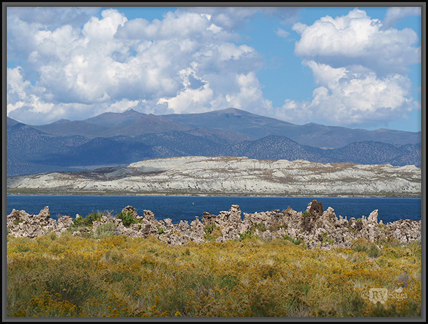 Paoha Island, Tufa at Mono Lake