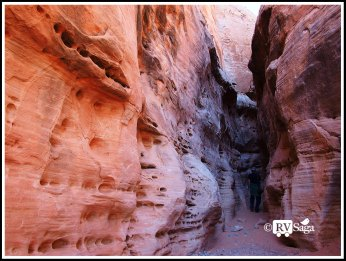 Canyon at White Domes