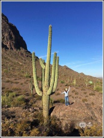 Standing by a Saguaro. Picacho Peak State Park, Arizona