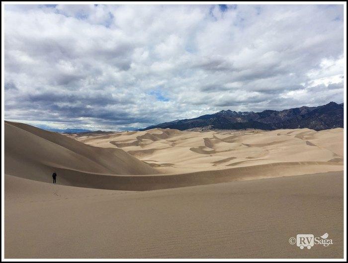 Curves-on-Sand-Dunes