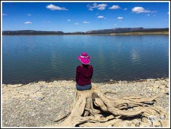 Weiwei By Heron Lake