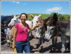 Petting Burros. Photo Credit: Stephen Jones