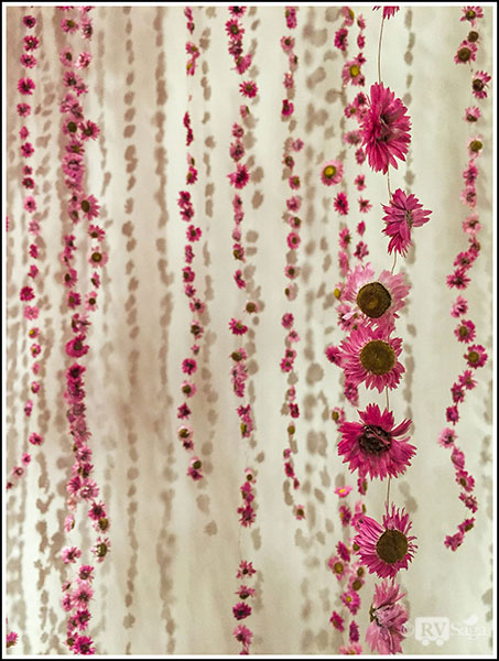 Strings-of-Dry-Flowers-and-Shadows