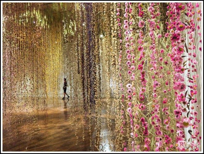 Amazing Hanging Wildflowers Artwork in Toledo Museum of Art