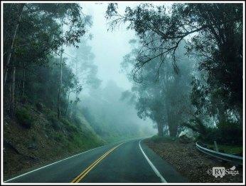Fog Shrouded Big Sur Coast Hwy