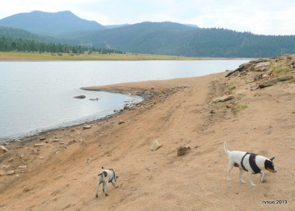 The lake level is dropping quickly to supply water to ranches.
