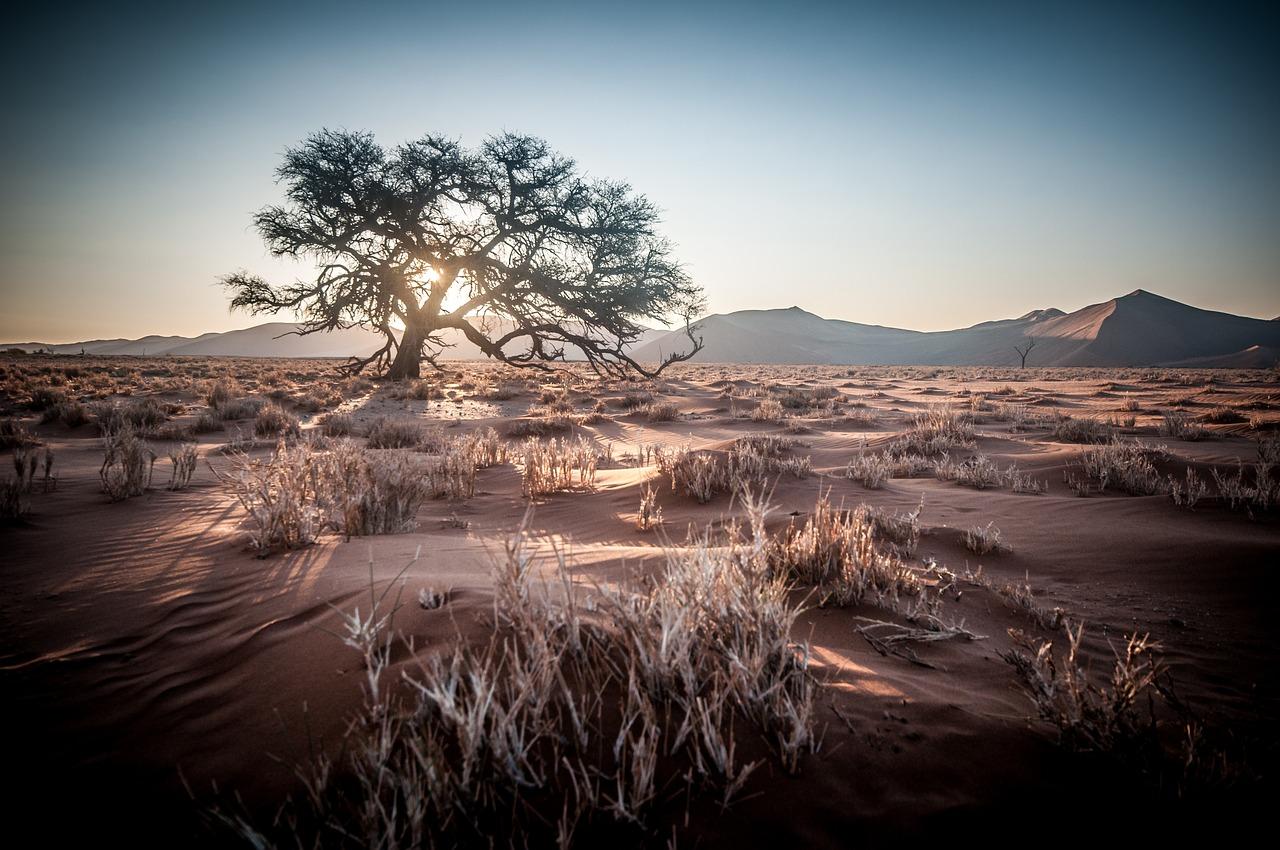 إفريقيا