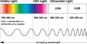 uva-chart_hev-light
