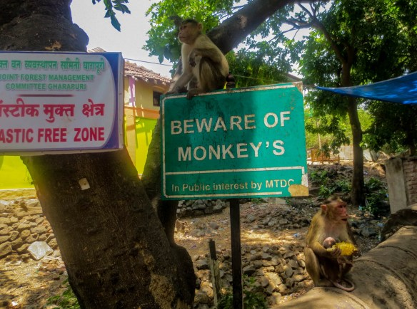 Beware of Monkeys