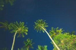 Sri Lanka_Intrepid_RyanBolton-3K5A4702