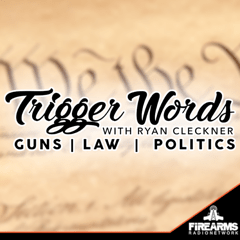 021 – The 3D Firearms Prohibition Act H.R. 7115