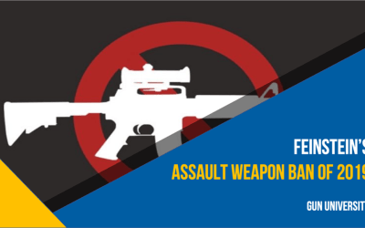 The 2019 Assault Weapons Ban