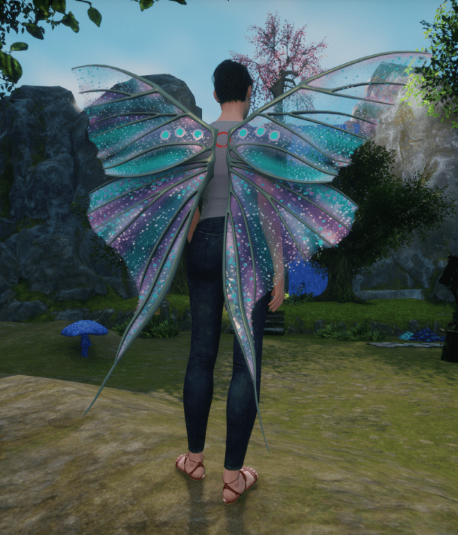 Outfit Outlay Fairy Wings 2 10 Sept 2017