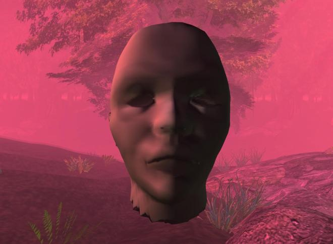 Face in the Forest by Torley Linden