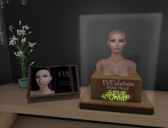 Eve Mesh Head 24 Sept 2018.jpg
