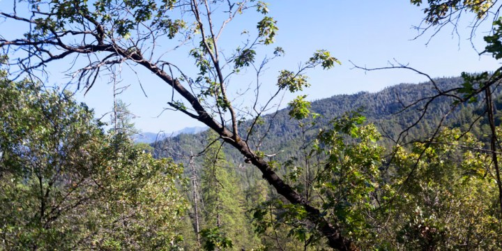 Exploring Whiskeytown: Salt Creek Loop Trail