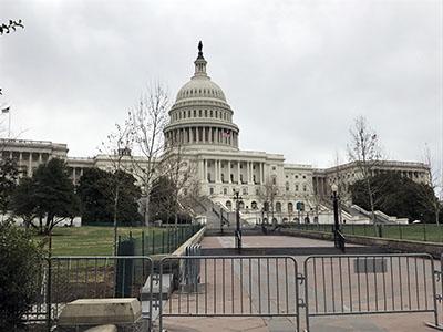 U.S. Capitol Washington D.C.