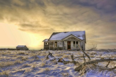 Winter Abandon
