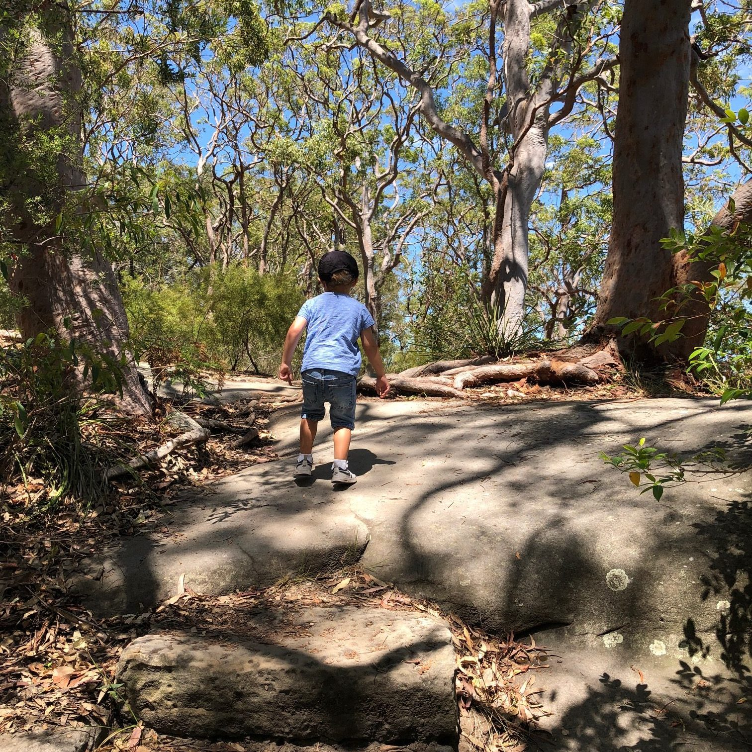 Berry Island – Playground + Bush Walk on Sydney Harbour