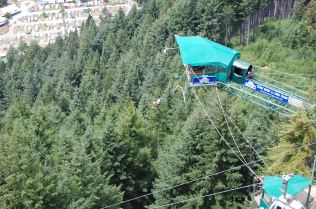 Want to Bungee jump?