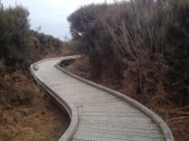 Waituna Lagoon walkway