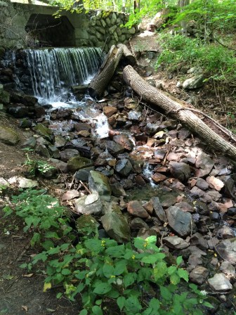 Small waterfall on Spot Pond Brook