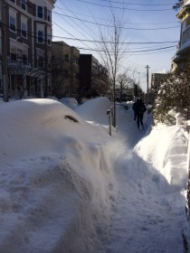 Those piles of snow are cars