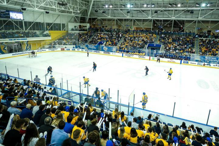 MHKY: Homecoming Arena Crowd