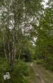 fotospacer grabicz-5907
