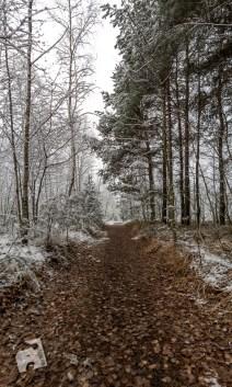 grabicz-zima-1-6