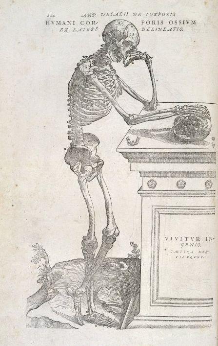 Vesalius, De humani corporis fabrica (1555)