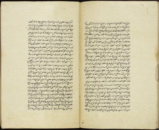 Arabic 809