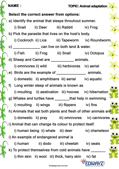 small resolution of Animal Adaptations Worksheets 3rd Grade   Printable Worksheets and  Activities for Teachers