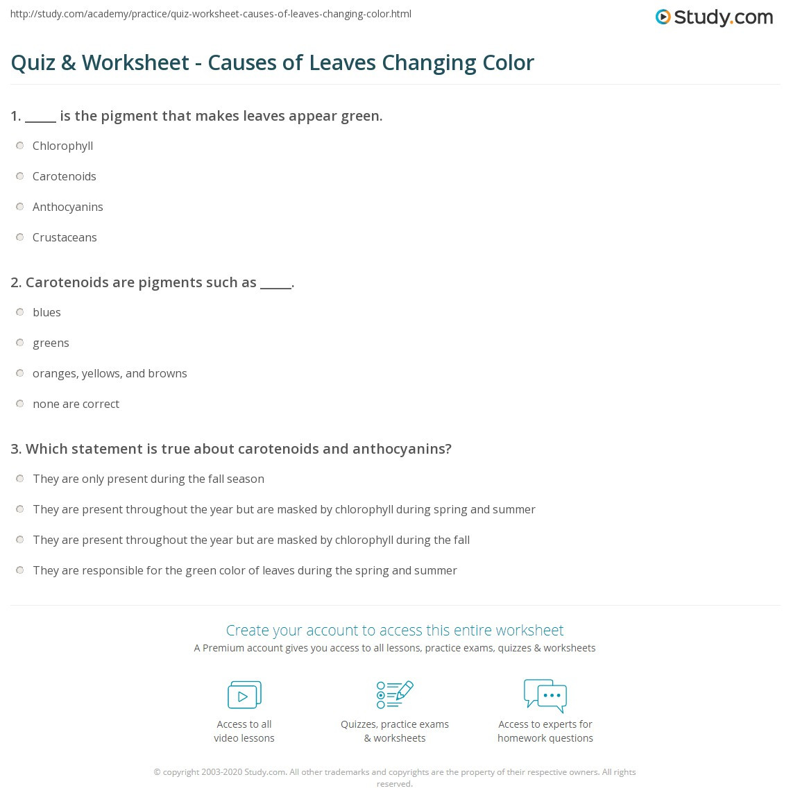 Why Leaves Change Color Worksheet Theme Library