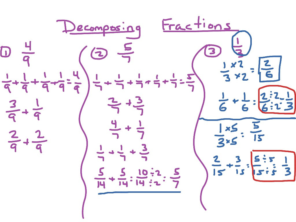 30 Decomposing Fractions Worksheets 4th Grade