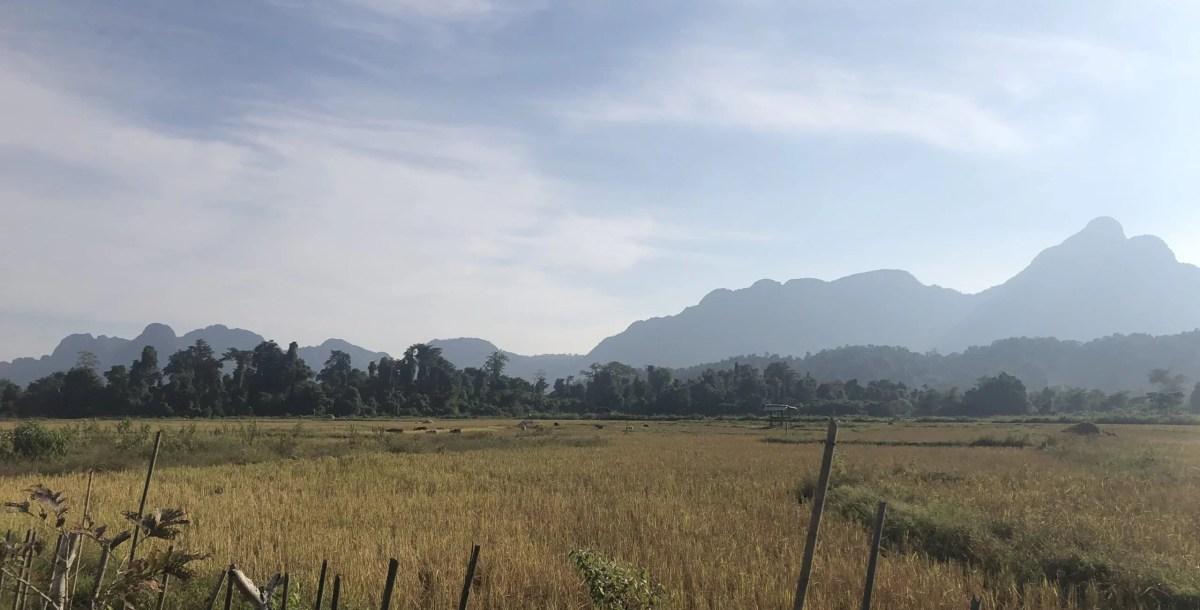 A Short Piece on Laos and 'Calm', by Frankie Stew & Harvey Gunn