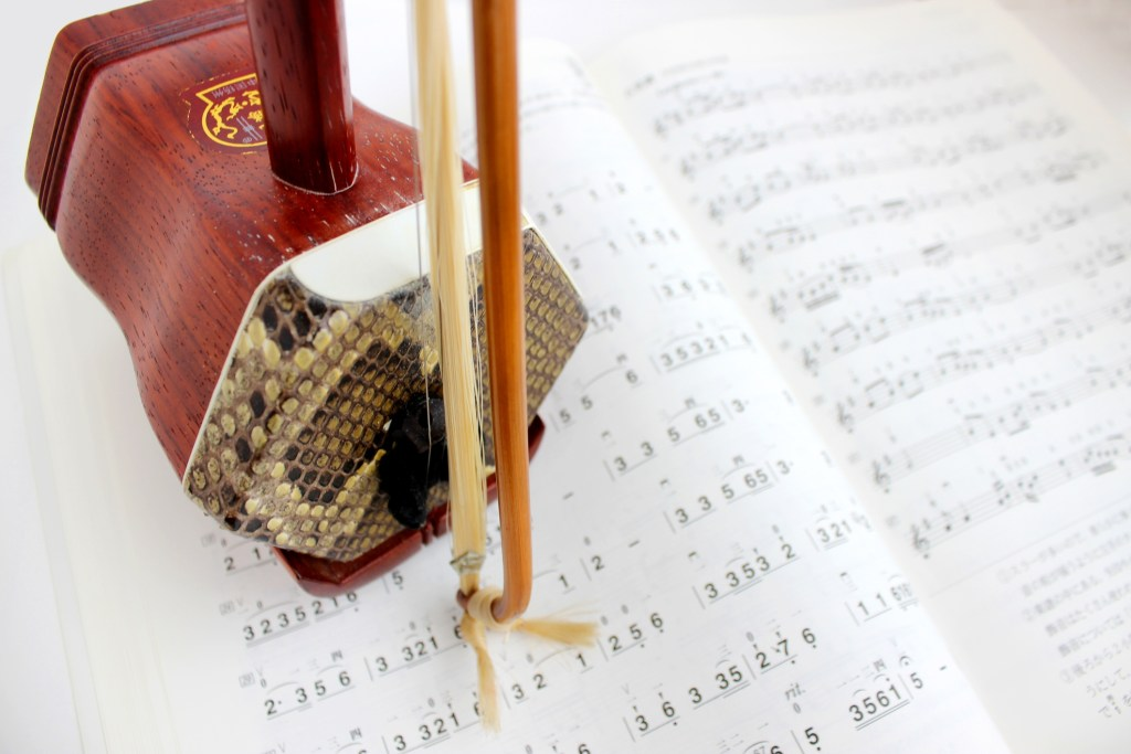 """The erhu is a two-stringed bowed musical instrument, more specifically a spike fiddle, which may also be called a """"southern fiddle"""", and sometimes known in the Western world as the """"Chinese violin"""" or a """"Chinese two-stringed fiddle""""."""