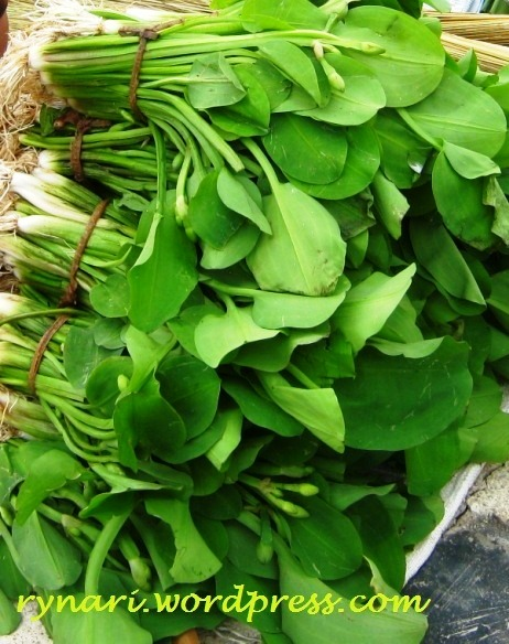 Sayuran Yang Berasal Dari Bunga : sayuran, berasal, bunga, Sayuran, Fenomenal, RyNaRi