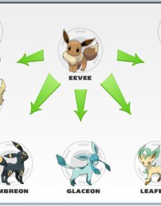 Eevee evolution chart also rynozodiac   awesome site rh wordpress