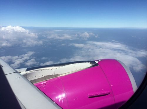 ピーチ飛行機上空景色
