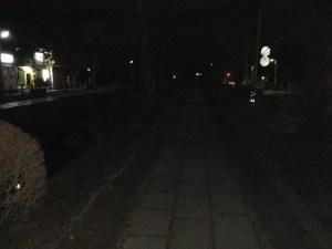 哲学の道 夜 その6