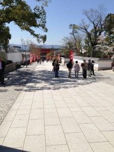 伏見稲荷大社 桜