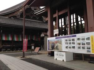 西本願寺 5月
