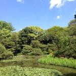 6月の京都平安神宮 中神苑