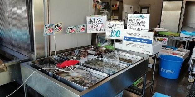 貝類のコーナー